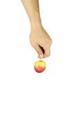 Bemannen Sie Hand auf dem lokalisierten Hintergrund, der einen roten Apfel hält Stockfotos