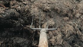 Bemannen Sie organisches Düngemittel der Lasten in einer Schubkarre auf seinem eigenen Bauernhof Handarbeit stock video