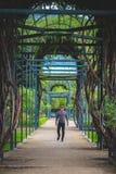 Bemannen Sie Porträt mit einem Labyrinthweg im Park Stockfotografie