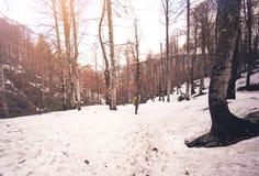 Bemannen Sie Reisenden mit dem Rucksack, der im Schneewald wandert Stockfotos