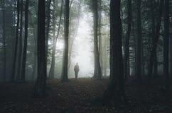 Bemannen Sie Schattenbild im dunklen gespenstischen Wald auf Halloween Lizenzfreies Stockfoto