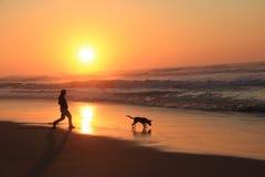 Bemannen Sie Spiel mit einem Hund bei Sonnenuntergang auf dem Strand Stockfotografie