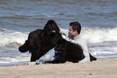 Bemannen Sie und ist Hunde im Strand Stockfotografie