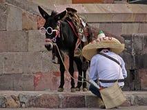 Bemannen Sie und sein Esel, der oben für mexikanische revolutionäre Festlichkeiten in San Miguel de Allende gekleidet wird stockbild