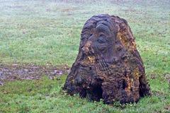Bemannt das Gesicht, das in Baumstumpf geschnitzt wird Stockbild