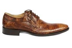 Bemannte Schuh 1 Lizenzfreies Stockbild