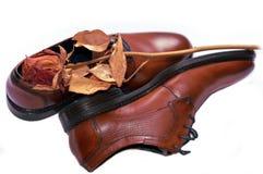 Bemant schoenen met droog toenam op bovenkant Royalty-vrije Stock Afbeeldingen