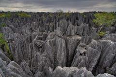 bemaraha de tsingy στοκ εικόνες