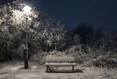 Bemch and lamp in night with snow Royalty Free Stock Image