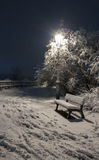 Bemch and lamp in night with snow Stock Image