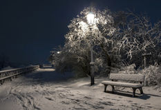 Bemch y lámpara en noche con nieve Imagenes de archivo