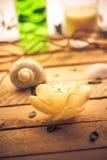 Bemerkte kaars overzeese shells houten achtergrond Royalty-vrije Stock Afbeeldingen