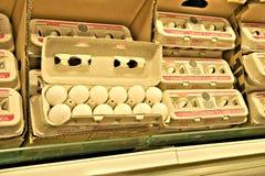 BEMIDJI, MANGANÈSE - 8 FÉVRIER 2019 : Oeufs frais de poulet dans le carton ouvert sur l'étagère de supermarché image stock