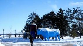 BEMIDJI, MN - 8 FEB 2019: Paul Bunyan and Babe the Blue Ox in winter near frozen Lake Bemidji are popular road side attraction sta. Tues, where people often take stock video