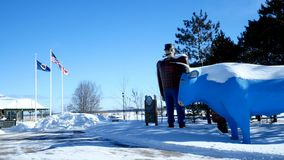 BEMIDJI, MN - 8 FEB 2019: Statue of Paul Bunyan and Babe the Blue Ox, Legendary Lumberjack and popular landmark. BEMIDJI, MN - 8 FEB 2019: Statue of Paul Bunyan stock video footage