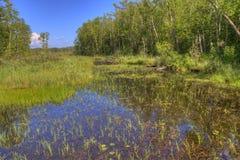 Bemidji-Nationalpark auf See Bemidji lizenzfreie stockbilder