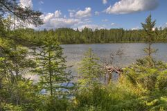 Bemidji State Park on Lake Bemidji stock photography