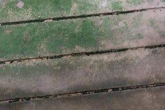 Bemost beton stock afbeeldingen