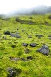 Bemost en mistig landschap in het Nationale Park van Skaftafell stock afbeeldingen