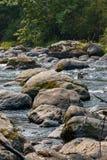 Bemost keienlood over blauwe brede rivier in de zomer royalty-vrije stock foto