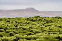 Bemost Lava Fields dichtbij Vik in IJsland stock afbeeldingen