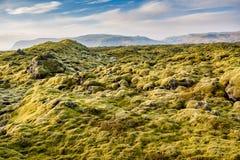Bemost Lava Fields dichtbij Vik in IJsland royalty-vrije stock afbeeldingen