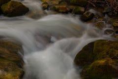 Bemost rotsen en water stock foto's