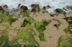Bemost Strand stock afbeeldingen