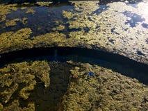 Bemost Water stock afbeelding