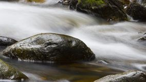 Bemost Water royalty-vrije stock afbeelding