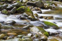Bemost Water stock afbeeldingen