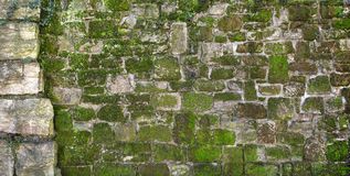 Bemoste oude natuursteenmuur Stock Foto