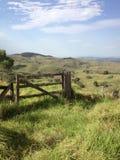 Bemoste poort aan de blauwe hemel van de paddockaard Royalty-vrije Stock Foto's