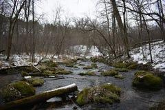 Bemoste rivier Royalty-vrije Stock Foto's