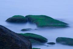 Bemoste rotsen op zee Stock Foto