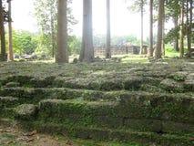 Bemoste ruïnes Royalty-vrije Stock Afbeelding