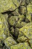 Bemoste stenen Royalty-vrije Stock Afbeeldingen