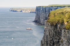 Bempton Cliffs Stock Photography