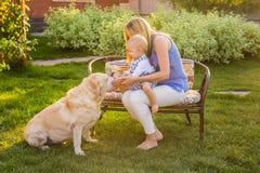 Bemuttern Sie das Halten des Babysohns und das Spielen mit Labrador-Hund im Park Stockfotografie
