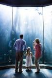 Bemuttern Sie das Machen des Fotos der Fische während die Tochter und Vater, die Aquarium betrachten Lizenzfreie Stockfotos