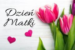 Bemuttern Sie ` s Tageskarte mit polnischen Wörtern: Dzien Matki - Mutter ` s Tag Lizenzfreies Stockfoto