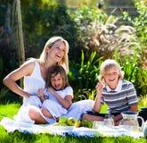 Bemuttern Sie und ihre Kinder, die in einem Picknick spielen Lizenzfreie Stockbilder