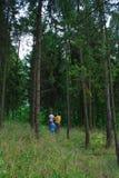 Bemuttern Sie und zwei Söhne im dunkelgrünen Holz Lizenzfreie Stockfotos