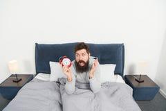 Benötigen Sie mehr Schlaf Spitzen für früh aufwachen Bärtiges schläfriges Gesichtsbett des Mannes mit Wecker im Bett Welche schre stockfotografie