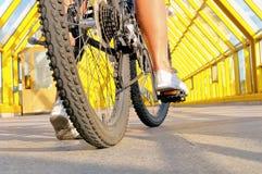 Ben av flickasammanträdet vid bakre sikt för cykel fotografering för bildbyråer