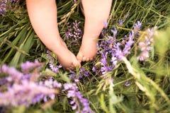 Ben av lite behandla som ett barn pojken mot grön äng med purpurfärgade blommor Royaltyfri Bild