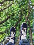 Ben i blåa gymnastikskor som lyfts upp under träd, närbilden, lägger benen på ryggen upp arkivfoto