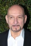 ben kingsley Obraz Stock