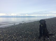 Ben kocha plażę fotografia stock
