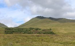 Ben Lawers National Nature Reserve, Scozia immagine stock